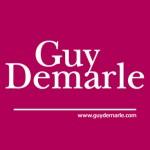 Logo_InternetGuyDemarle