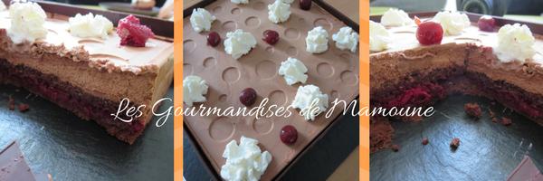 les-gourmandises-de-mamoune_3